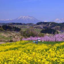 丹霞の春 撮影(藤村達弘)