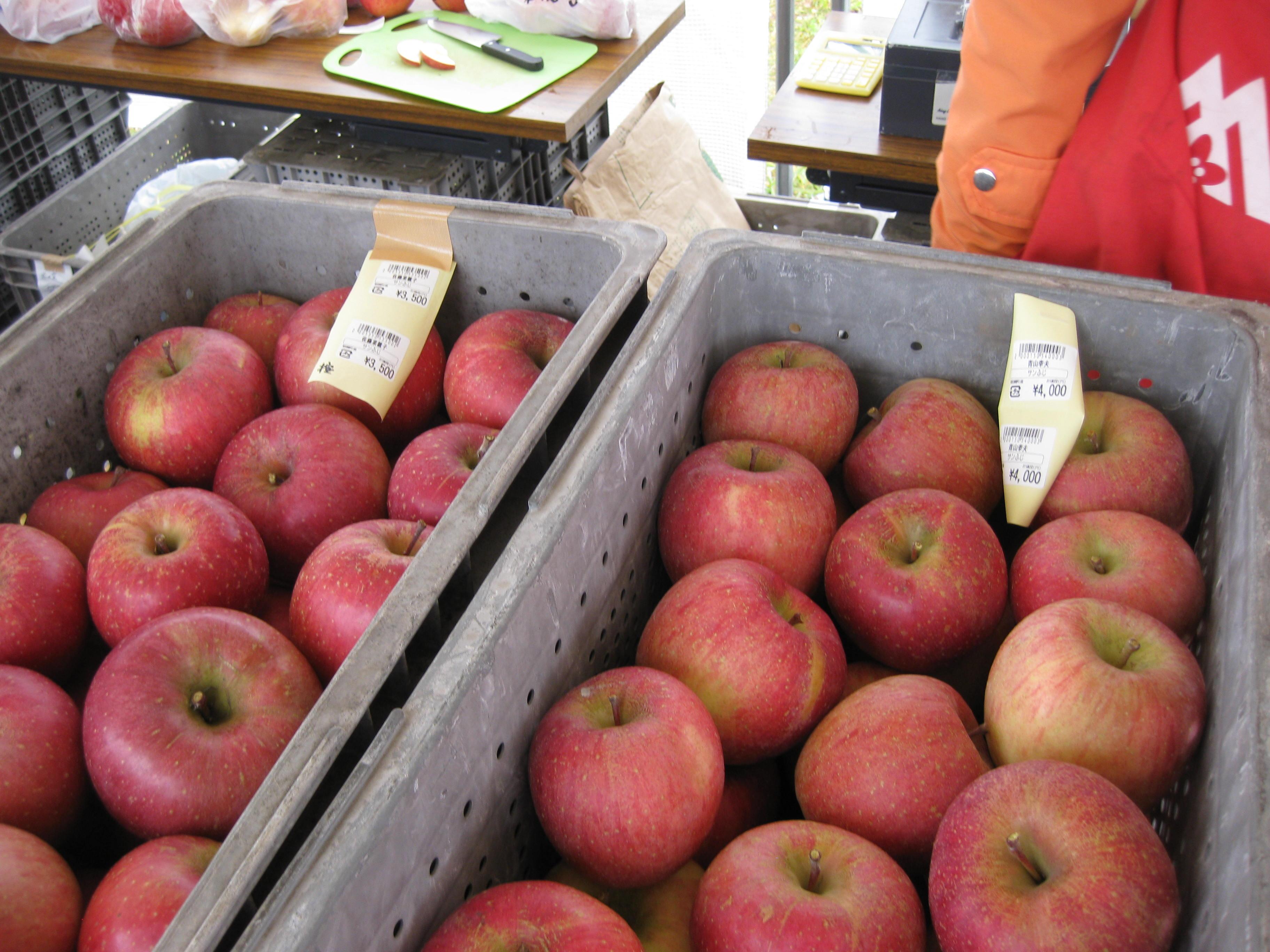 【終了しました】ふじりんご祭り