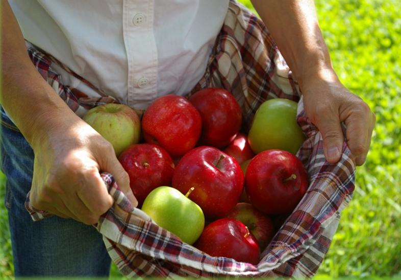 【終了しました。】飯綱町りんごスウィーツフェアー2017