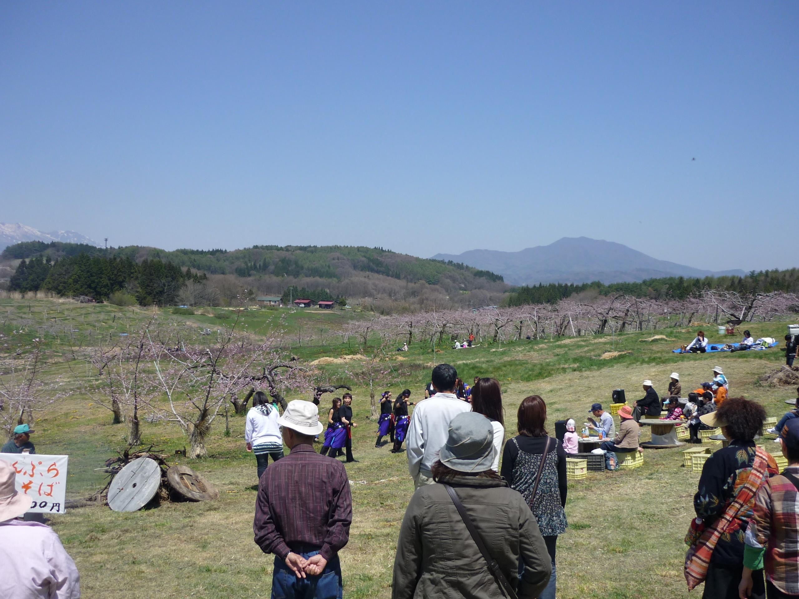 丹霞郷(たんかきょう)花まつり            4月29日(土)・30日(日)に変更!!