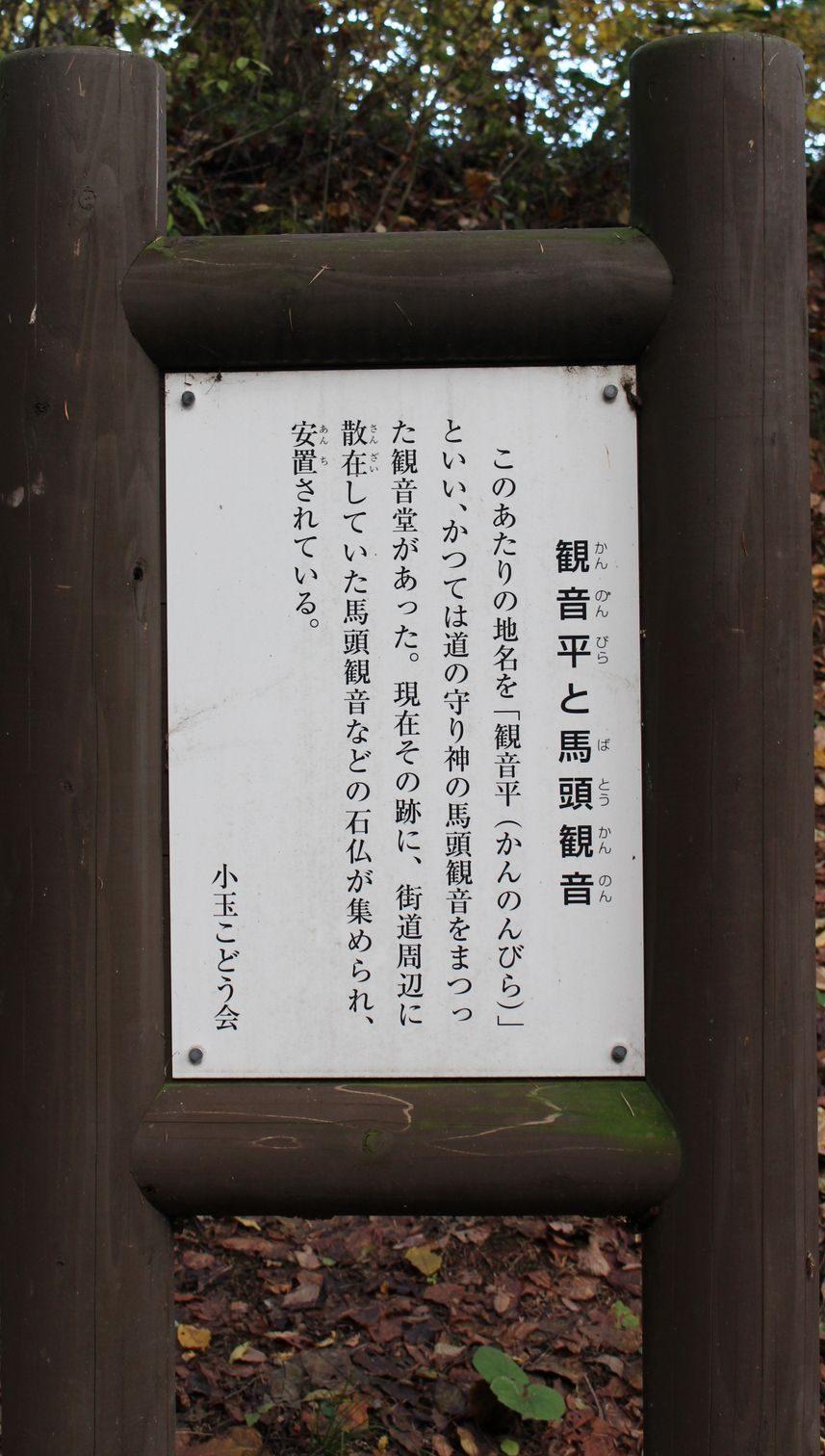 6古道(こどう)と観音平(かんのんびら)(馬頭観音)