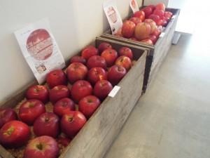 【終了しました。】彦根市の& Anneで『りんご展』