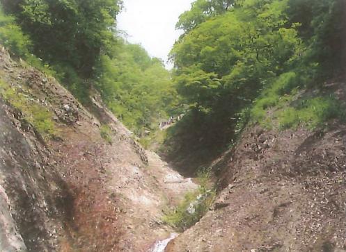「滝の沢」八蛇川の源流