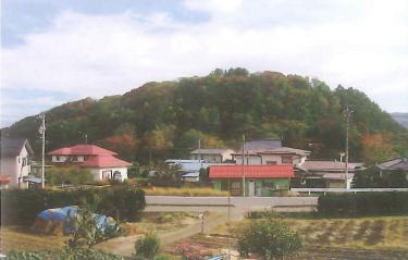 「矢筒山」暮らしとともに移り変わる里山
