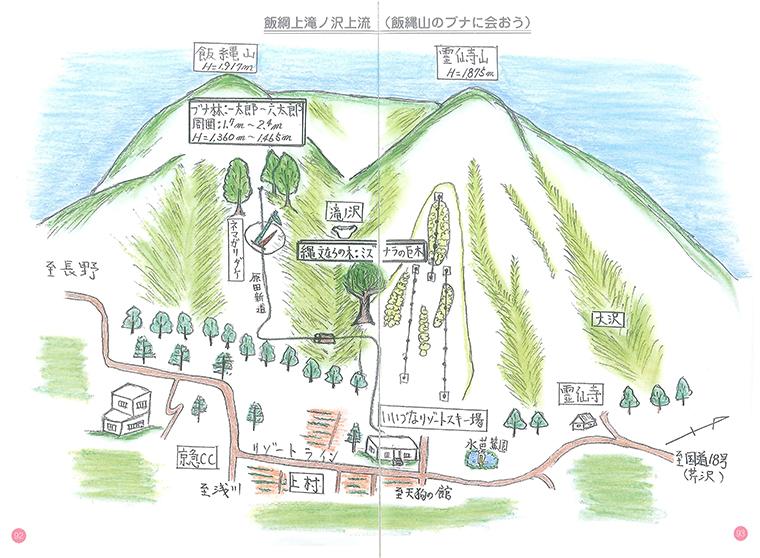 「飯綱山原田新道に残るブナ」原植生の残存?